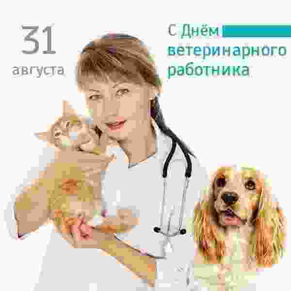 Поздравление губернатора Р.В. Старовойта с Днем ветеринарного работника
