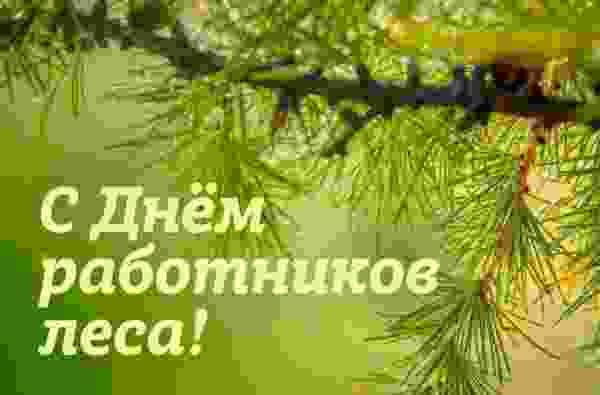 Поздравление губернатора Романа Старовойта с Днем работников леса